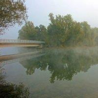 В утренней дымке :: Alexander Andronik