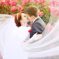 Fairytail :: Ольга Игнатьева