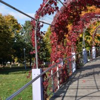 Красная арка :: Надежда Пеночкина