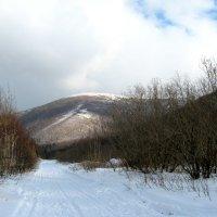А за горой снежок идет... :: Любовь Иванова