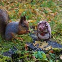 Дружеский обед в лесу :: Nataly St.
