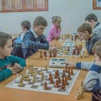 массовый шахматный турнир :: олеся тронько