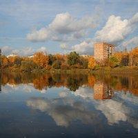 Осень в Подмосковье :: lady-viola2014 -