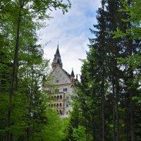 Дорога к замку#1 :: Mikhail