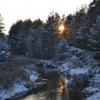 зима...просвечивает... :: Елена Рекк