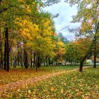 Осень в Петровском парке. :: Константин Поляков