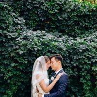 Свадебная фотосессия в Ставрополе :: Александр Кравченко