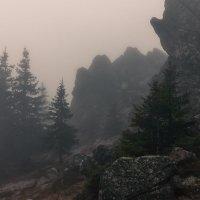 тишина :: Алексей Цирятьев