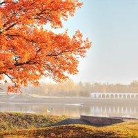 Осенний туман :: Евгений Никифоров