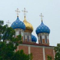 Купола собора. :: Татьяна