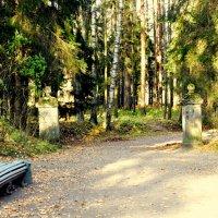 В Павловском парке  /2/ :: Сергей