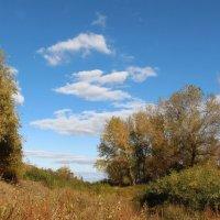 Там, в октябре :: Dr. Olver  ( ОлегЪ )