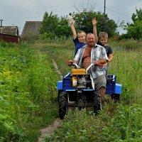 Хорошо в деревне летом. :: владимир