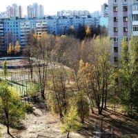 Золотая осень :: Damir Si