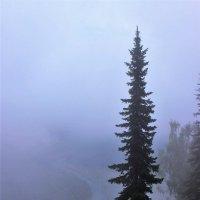 Туман на реке :: Сергей Чиняев