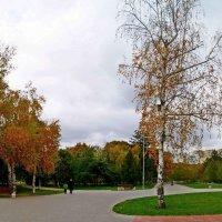 панорама осеннего парка :: Александр Корчемный