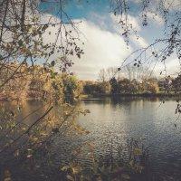 Осень :: Алексей Гладышев
