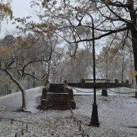 Первый снег :: Наталья Левина