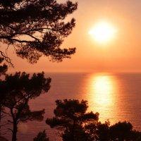 Закатное море :: Яна Иньская