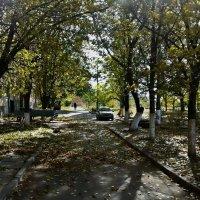 Осень в моем дворе :: Владимир Бровко