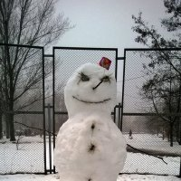 Кандидатка в Снегурочки...была. :: Злобный Шашель