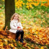 Золотая осень :: Екатерина Overon