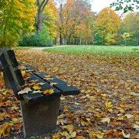 Осень - рыжая девчонка ... :: Galina Dzubina