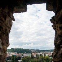Окно в Мир :: Сергей Т