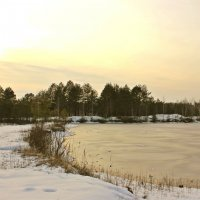 зимний закат :: оксана