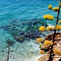 Море. :: Иван