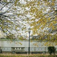 Осенний ажур :: Elena N