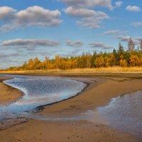 Осенний пляж :: Фёдор. Лашков