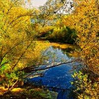Орельская осень :: Юрий Муханов