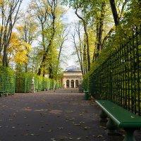 Осенний Летний сад :: Александр Руцкой