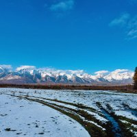 Следы на снегу :: Анатолий Иргл