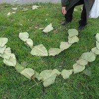 Улыбка упавших листьев... :: Алекс Аро Аро