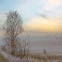 Туманный рассвет :: Юрий Спасенников