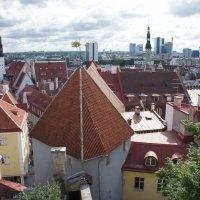Панорама города, вид с одной из смотровых площадок :: Елена Смолова