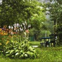 Утро в саду . :: Елена Kазак