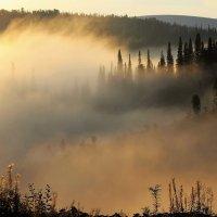 Солнце гребнем золотым расчёсывает седые космы тумана :: Сергей Чиняев