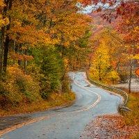 Осеними дорогами.. :: Slava Sh