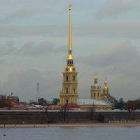 Панорама  Петропавловской   крепости :: Galina Leskova