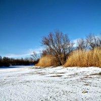 Первый снег :: Татьяна Королёва