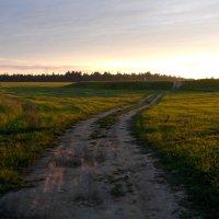 Пейзаж :: Ольга Мореходова