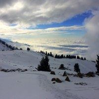 Погода в горах очень быстро менялась. :: Anna Gornostayeva