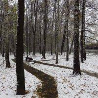 В Москве - снег :: Андрей Лукьянов