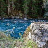 река Гоначхир... :: Юлия Бабитко