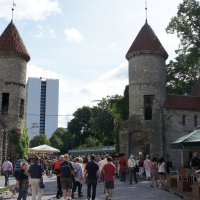 Сторожевые башни Вируских ворот :: Елена Павлова (Смолова)