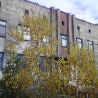 Осень! :: Миша Любчик