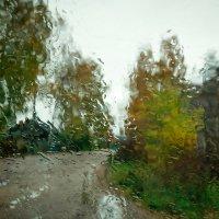Осенний дождь :: Андрей Соловьёв